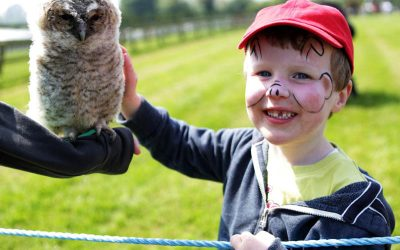 Family fun day at Glenroe Farm